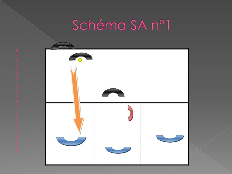 Schéma SA n°1