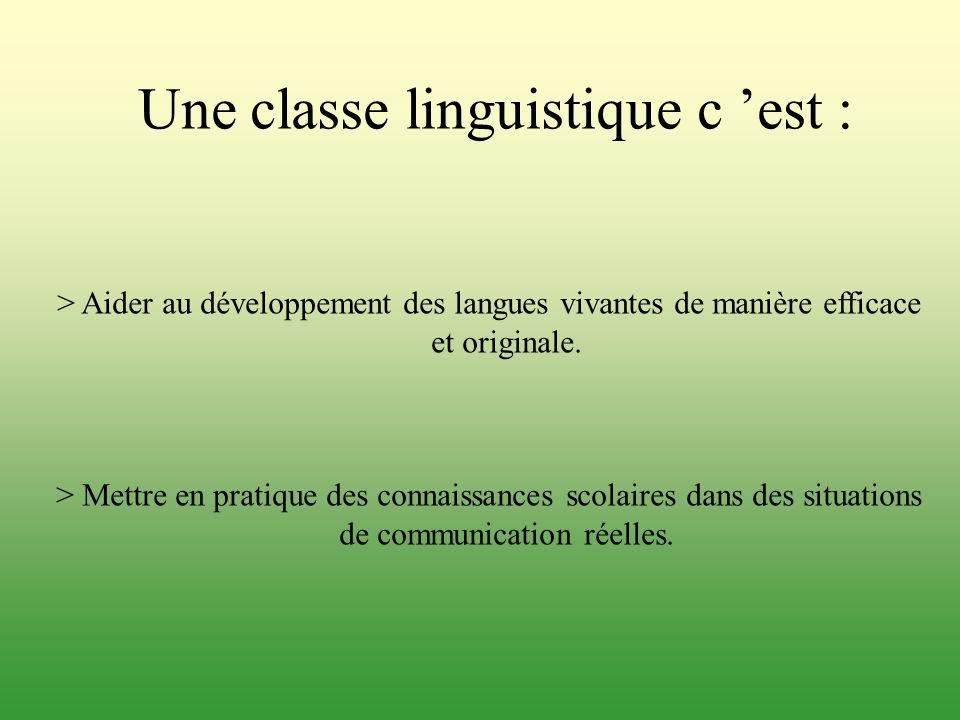 Une classe linguistique c 'est :