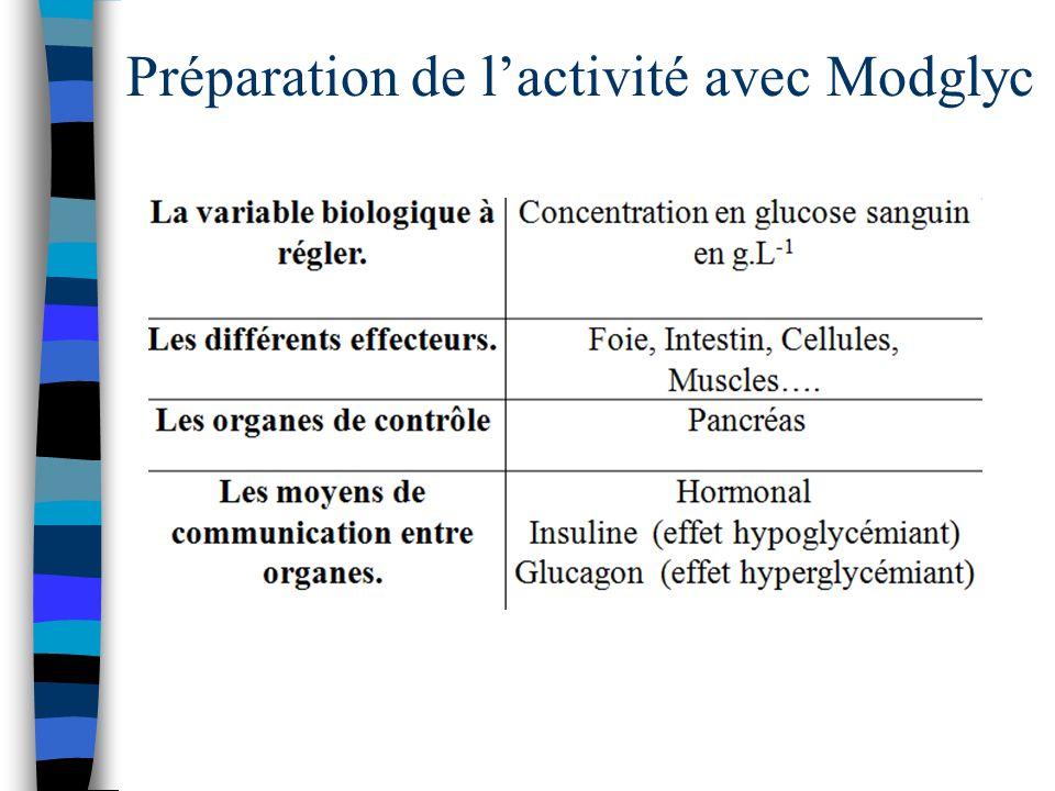 Préparation de l'activité avec Modglyc