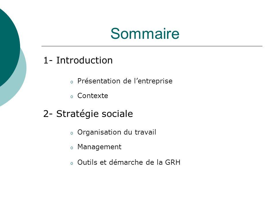Sommaire 1- Introduction 2- Stratégie sociale