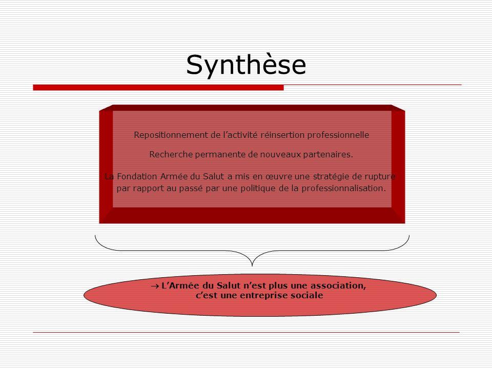 Synthèse Repositionnement de l'activité réinsertion professionnelle