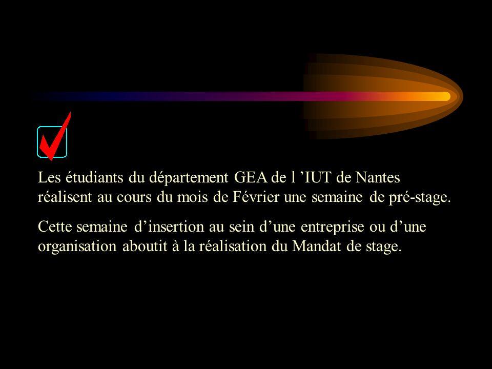 Les étudiants du département GEA de l 'IUT de Nantes réalisent au cours du mois de Février une semaine de pré-stage.
