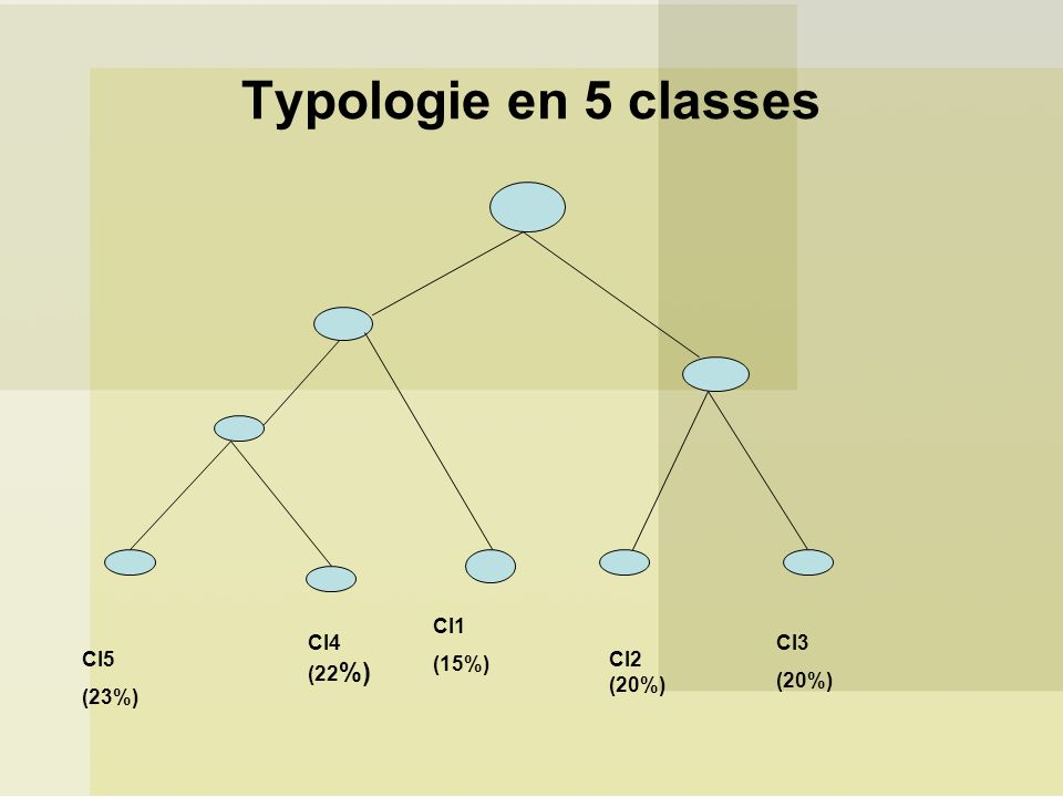 Typologie en 5 classes Cl4 (22%) Cl5 (23%) Cl1 (15%) Cl2 (20%) Cl3