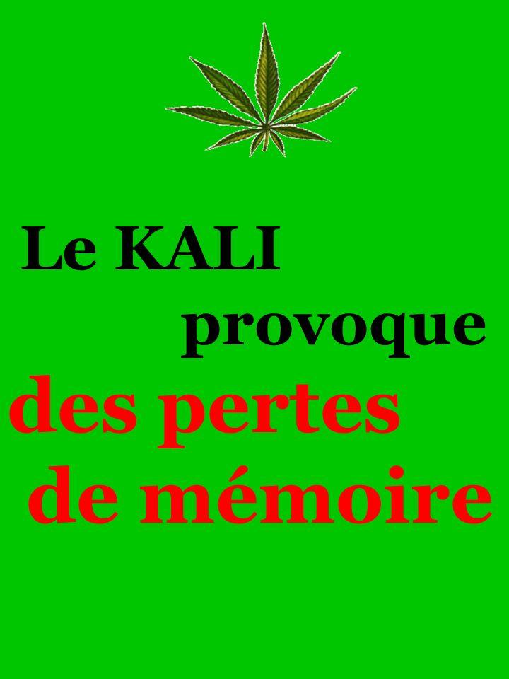 Le KALI provoque des pertes de mémoire