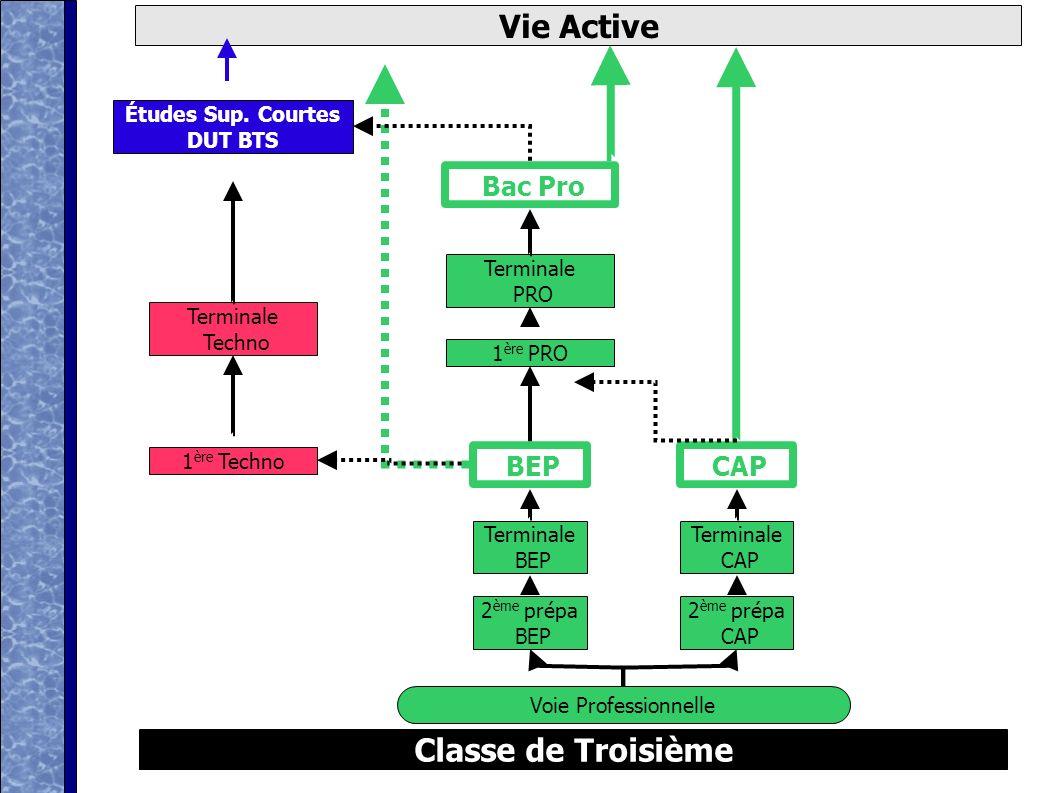 Vie Active Classe de Troisième Études Sup. Courtes DUT BTS Bac Pro