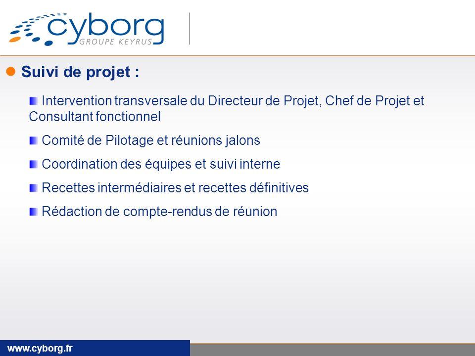 Suivi de projet : Intervention transversale du Directeur de Projet, Chef de Projet et Consultant fonctionnel.