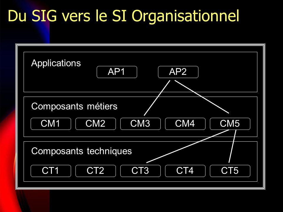 Du SIG vers le SI Organisationnel