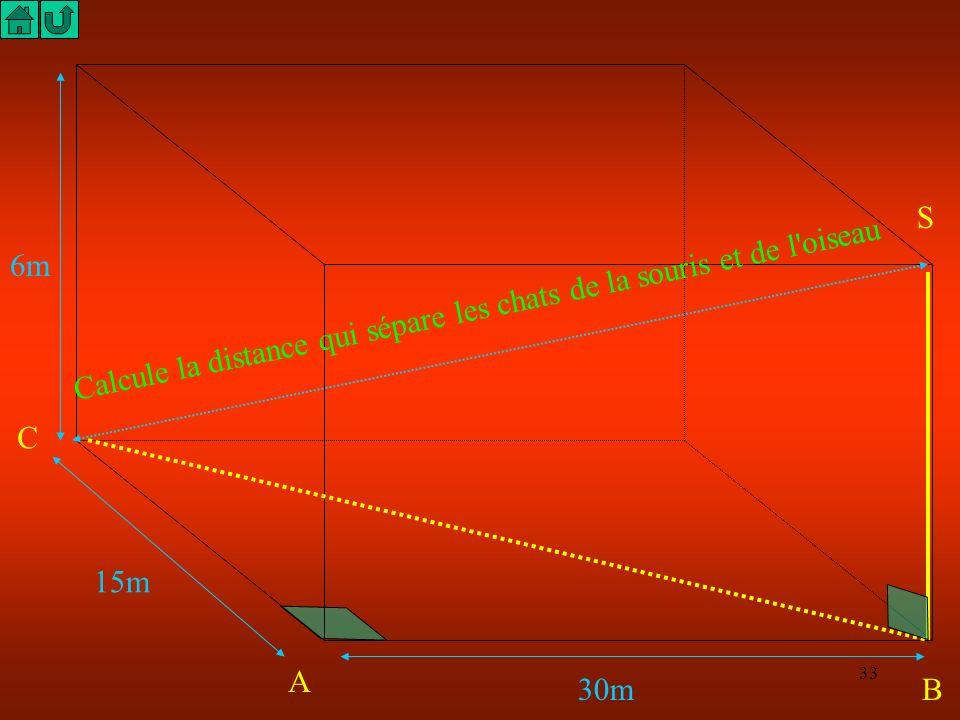 S 6m Calcule la distance qui sépare les chats de la souris et de l oiseau C 15m A 30m B
