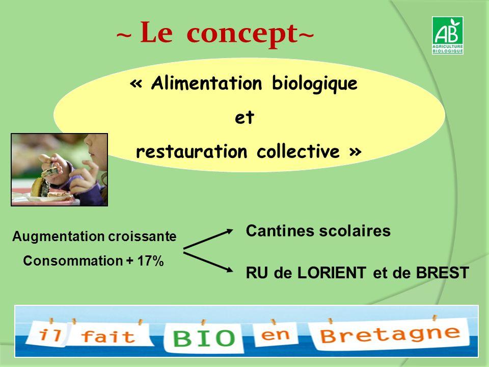« Alimentation biologique