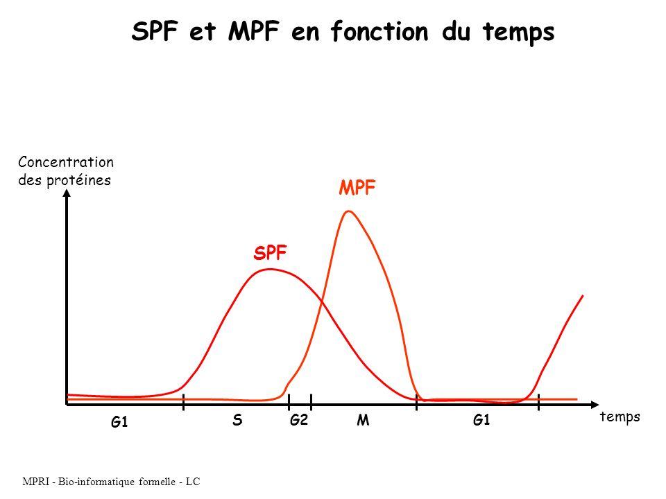 SPF et MPF en fonction du temps