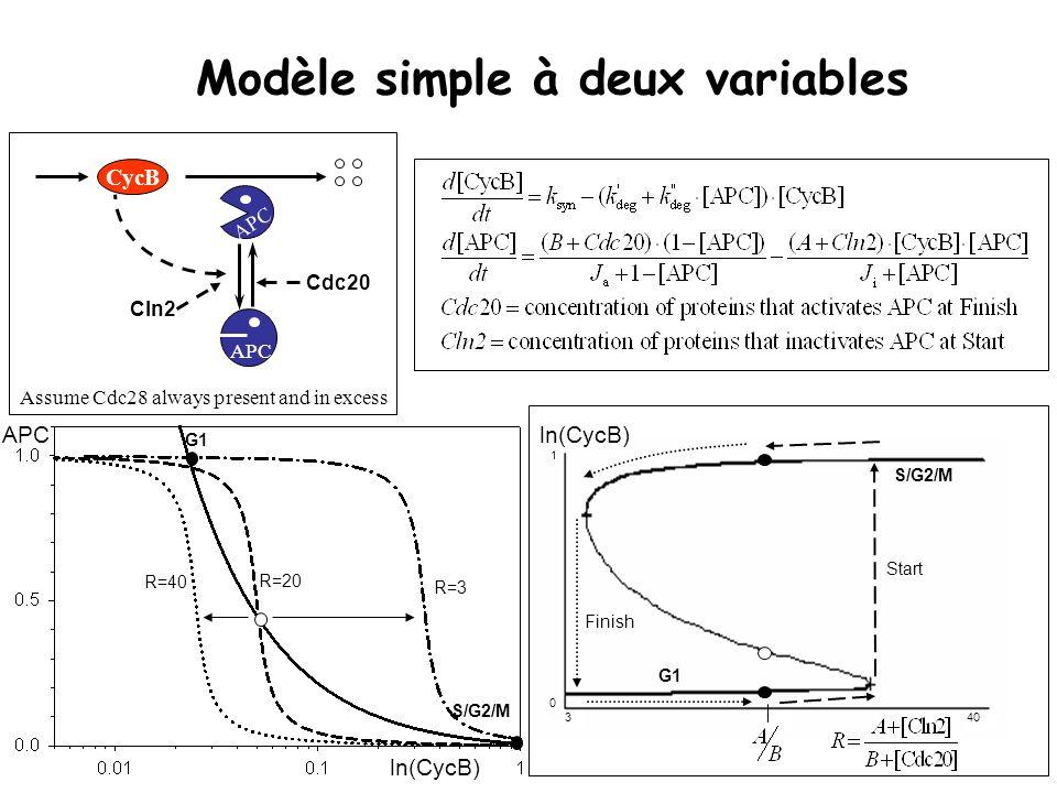 Modèle simple à deux variables