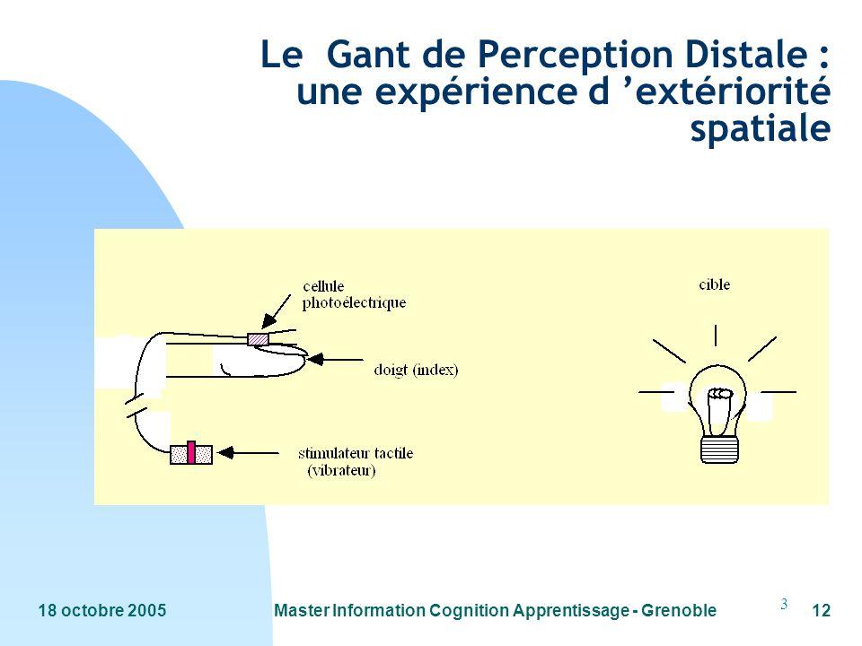 Le Gant de Perception Distale : une expérience d 'extériorité spatiale
