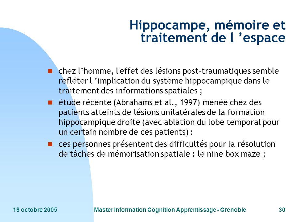 Hippocampe, mémoire et traitement de l 'espace