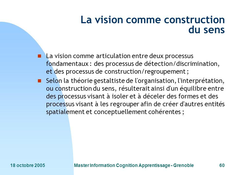La vision comme construction du sens