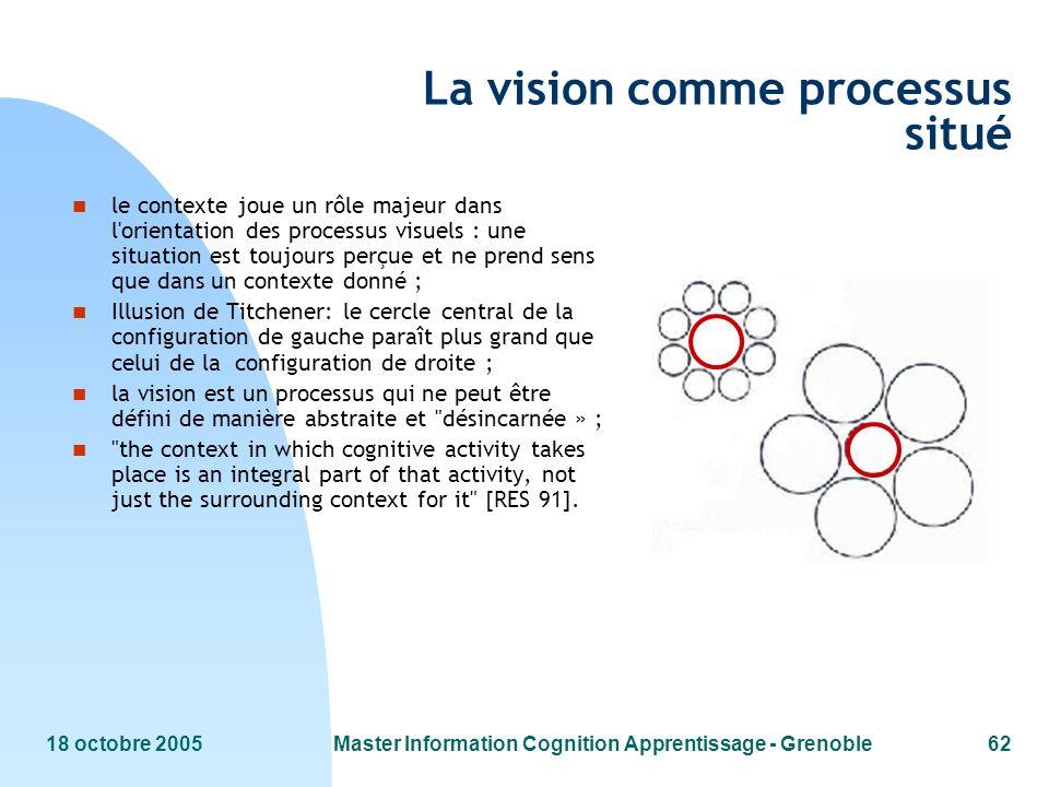 La vision comme processus situé