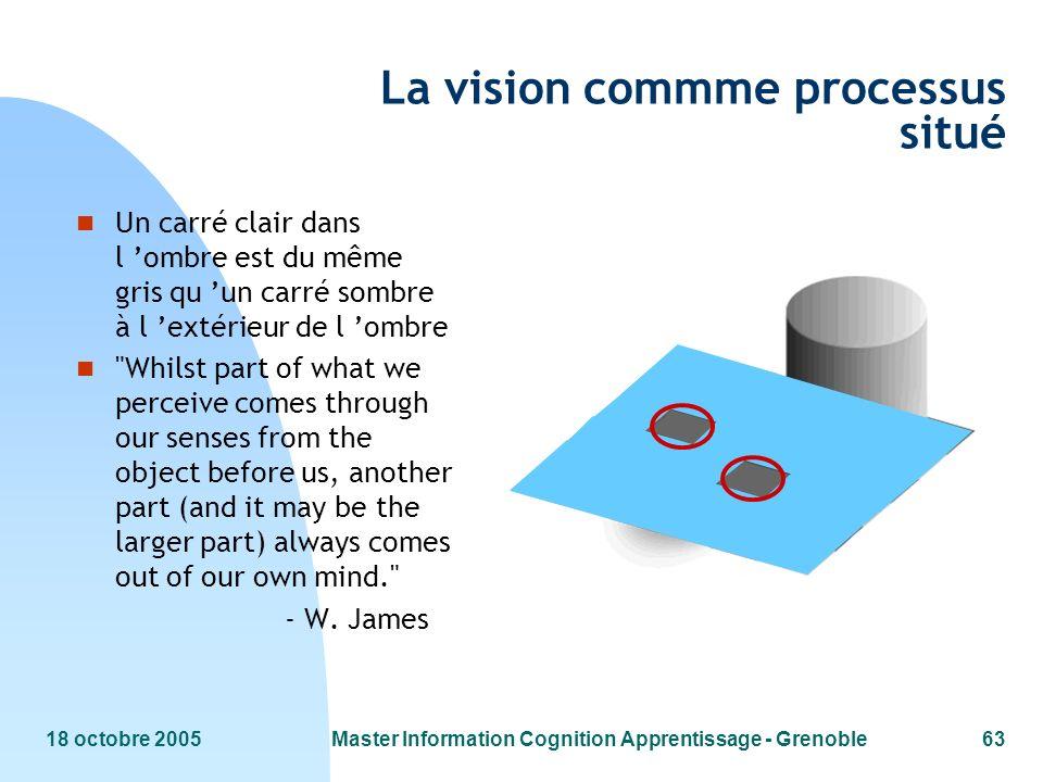 La vision commme processus situé