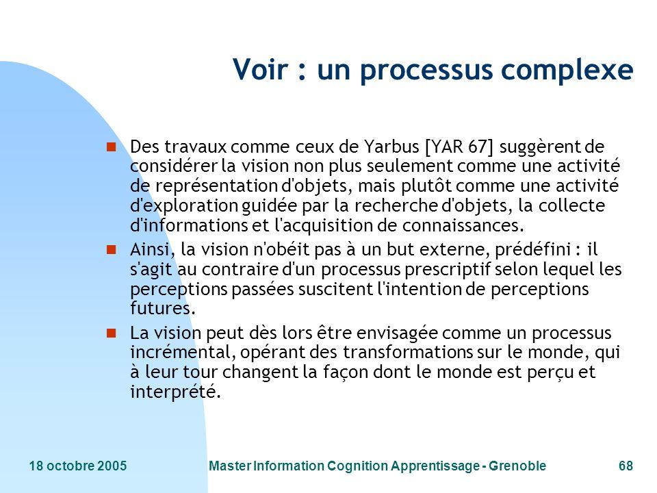 Voir : un processus complexe