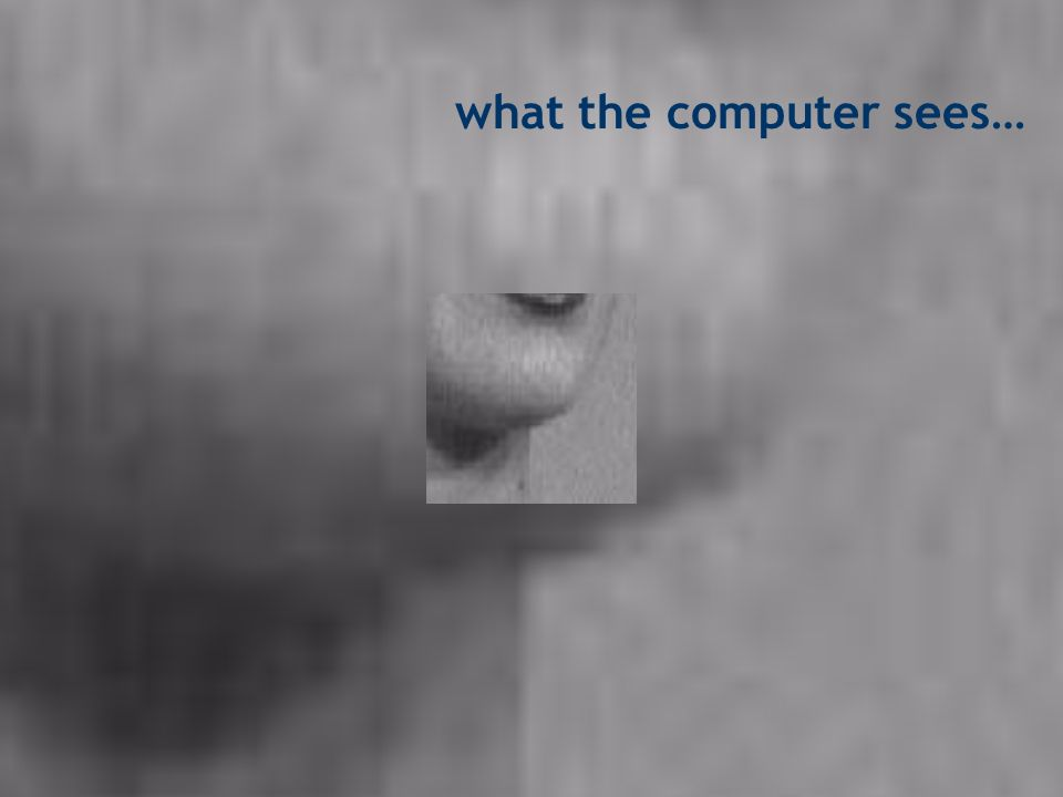 what the computer sees…