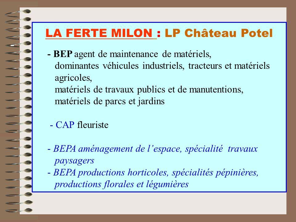 LA FERTE MILON : LP Château Potel