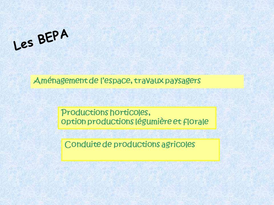 Les BEPA Aménagement de l'espace, travaux paysagers