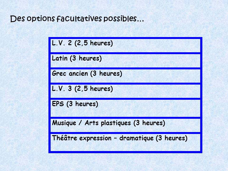 Des options facultatives possibles…