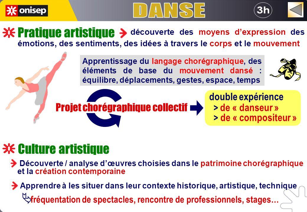 DANSE 3h Pratique artistique Culture artistique