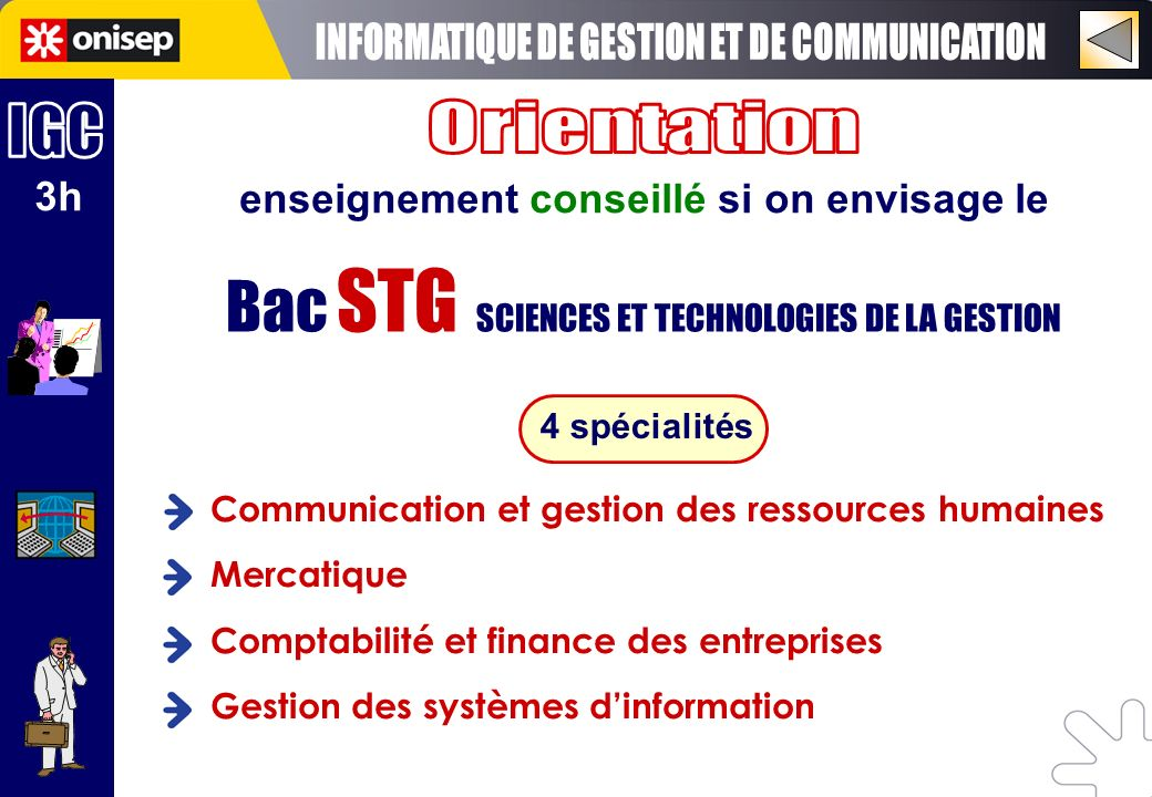 Bac STG SCIENCES ET TECHNOLOGIES DE LA GESTION