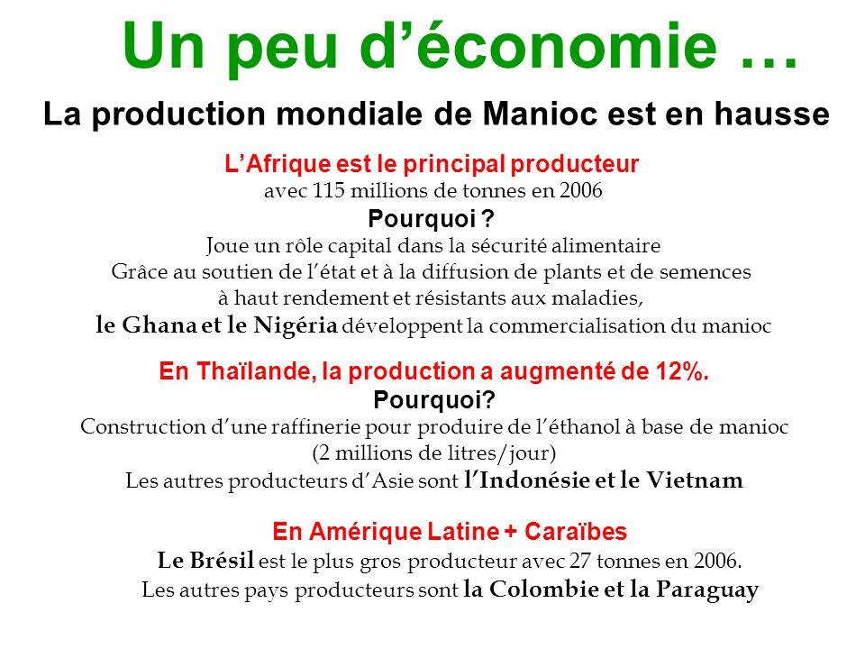 Un peu d'économie … La production mondiale de Manioc est en hausse