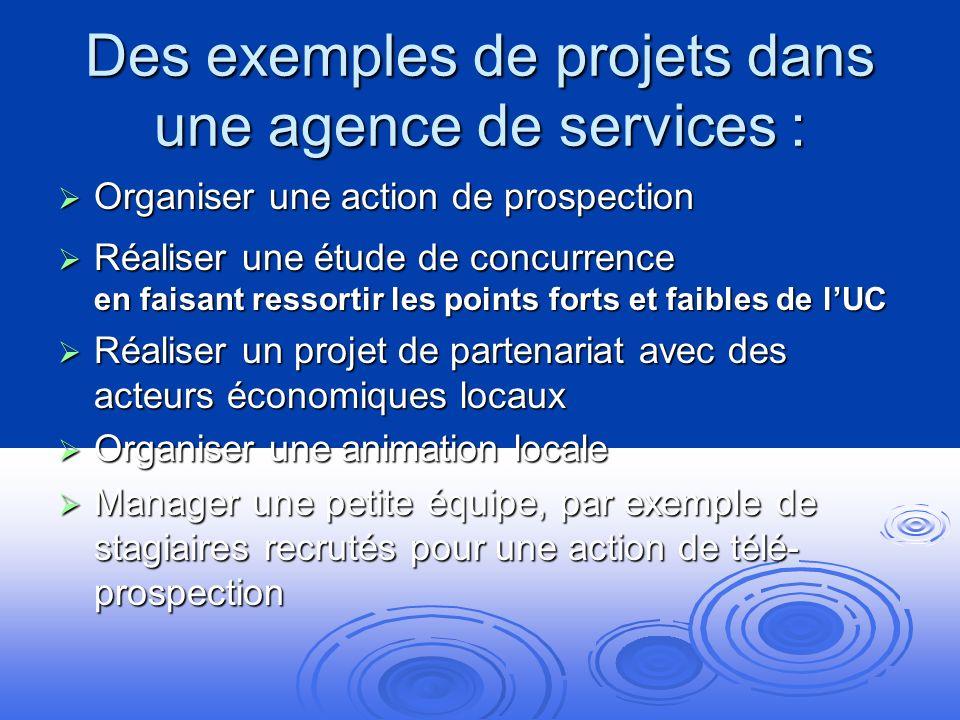 Des exemples de projets dans une agence de services :
