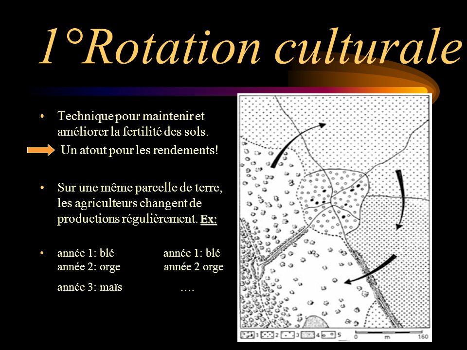 1°Rotation culturale Technique pour maintenir et améliorer la fertilité des sols. Un atout pour les rendements!