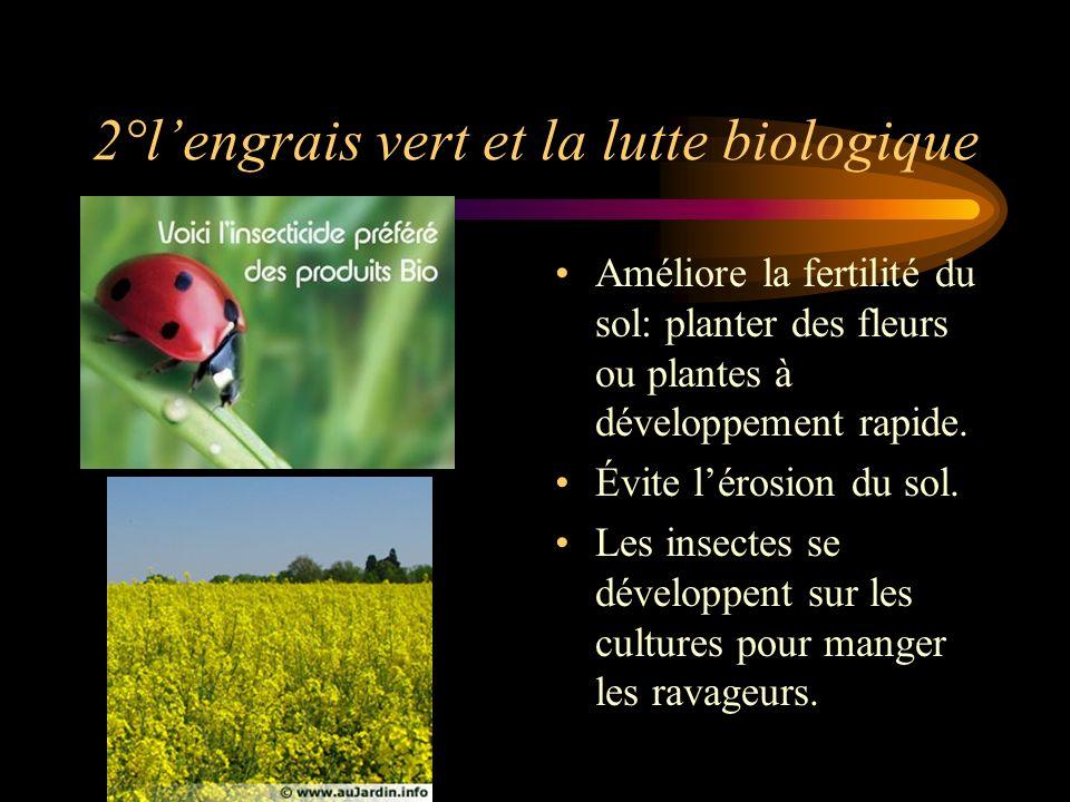 2°l'engrais vert et la lutte biologique