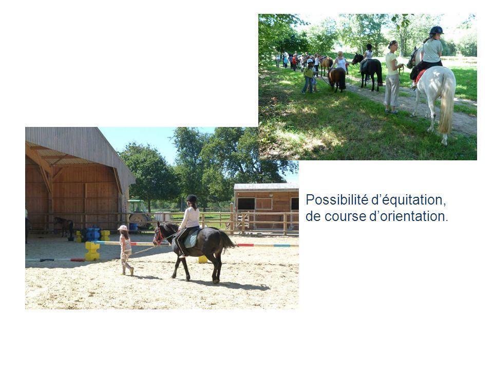 Possibilité d'équitation,