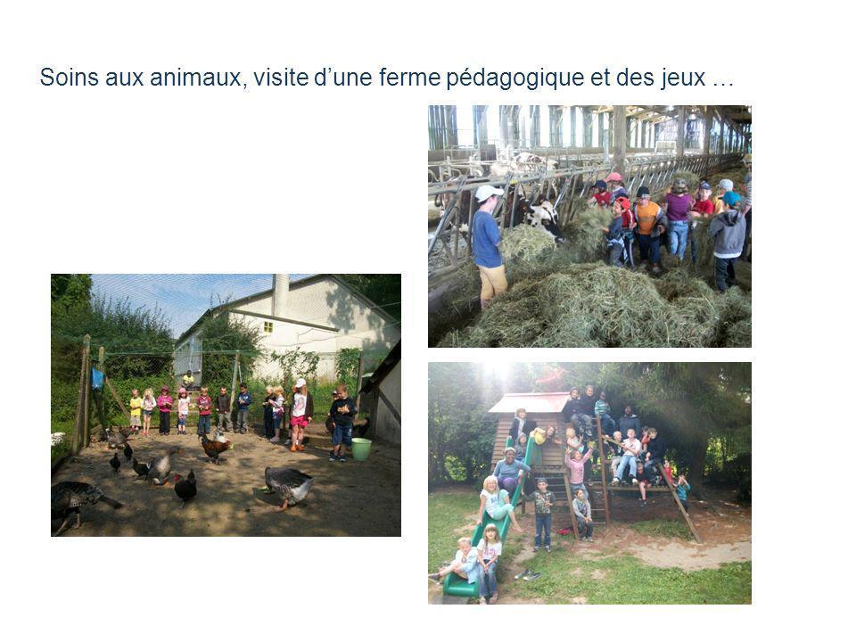 Soins aux animaux, visite d'une ferme pédagogique et des jeux …