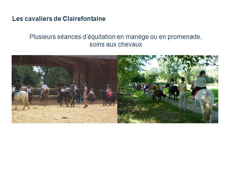 Plusieurs séances d'équitation en manège ou en promenade,