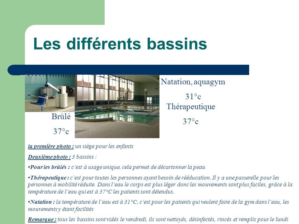 Les différents bassins