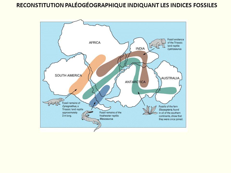RECONSTITUTION PALÉOGÉOGRAPHIQUE INDIQUANT LES INDICES FOSSILES