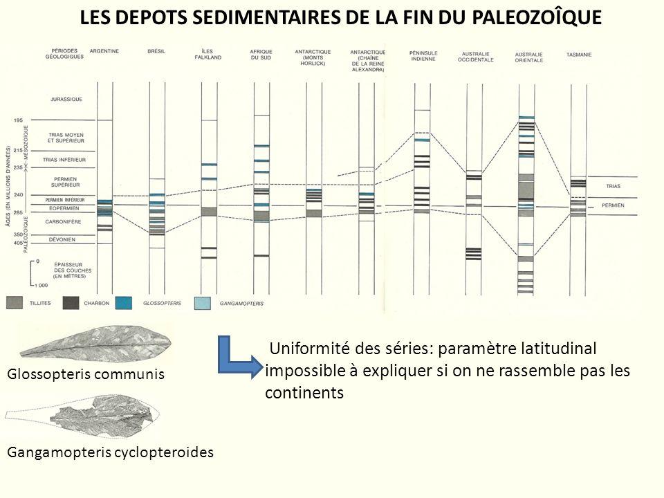 LES DEPOTS SEDIMENTAIRES DE LA FIN DU PALEOZOÎQUE