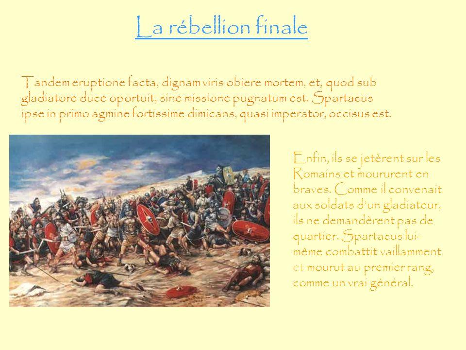 La rébellion finale