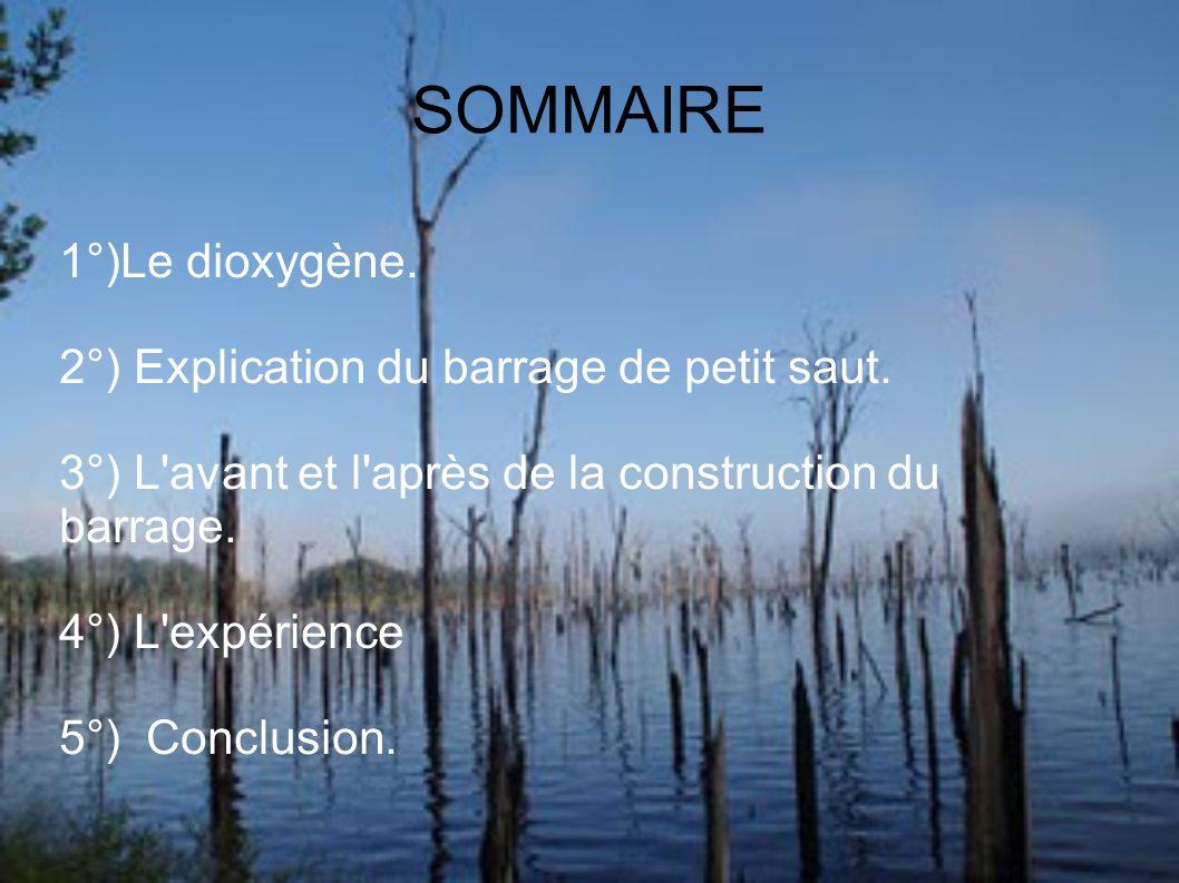 SOMMAIRE 1°)Le dioxygène. 2°) Explication du barrage de petit saut.