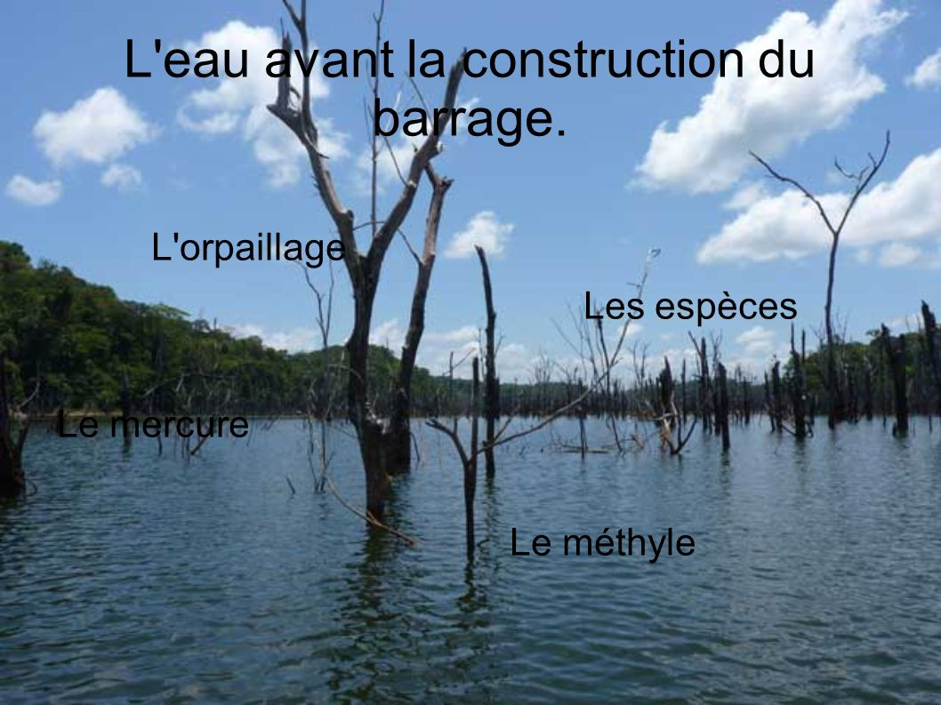 L eau avant la construction du barrage.