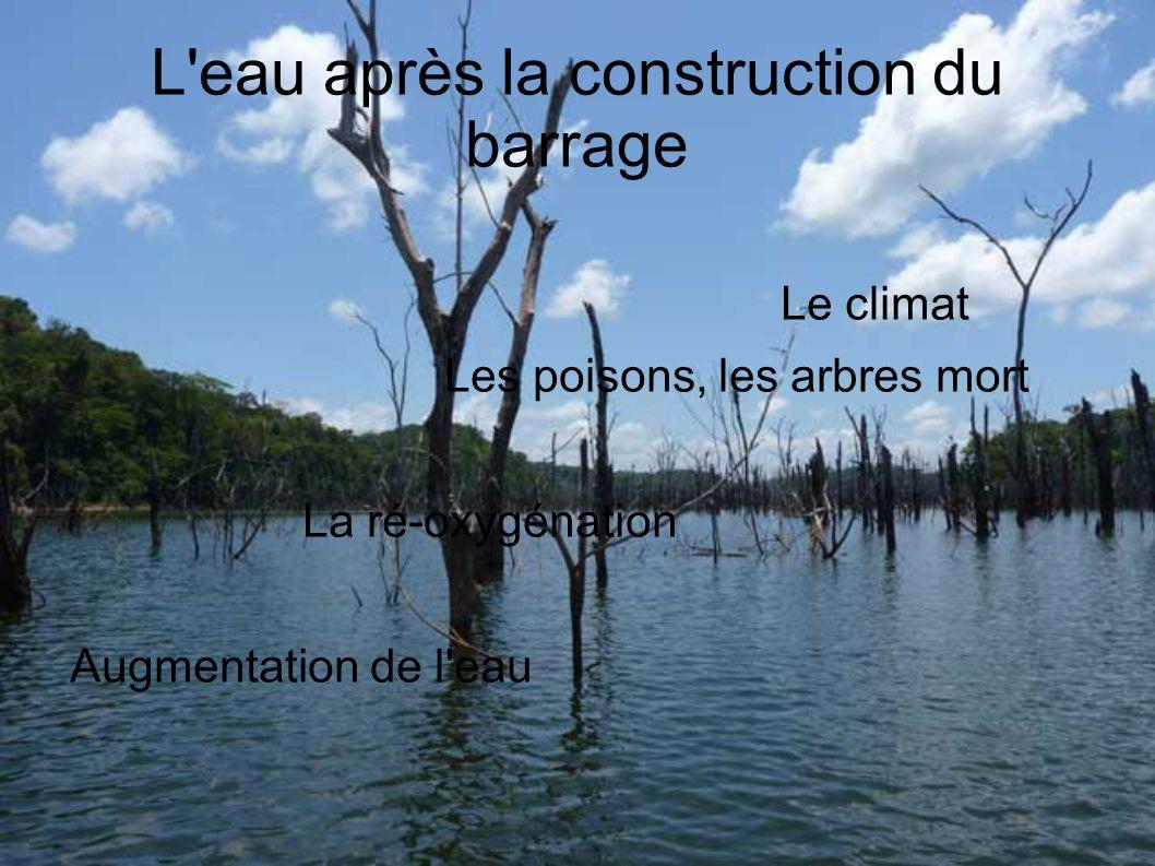 L eau après la construction du barrage