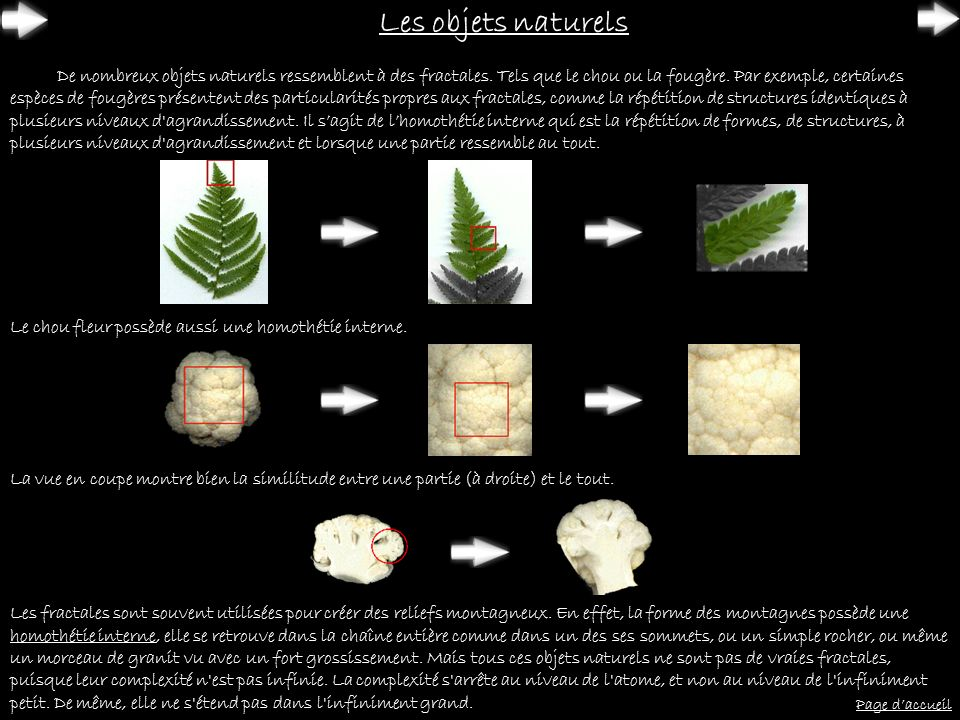 Les objets naturels