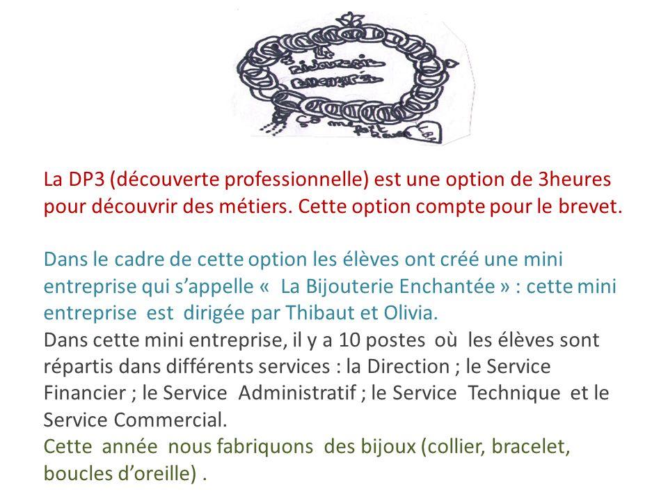 La DP3 (découverte professionnelle) est une option de 3heures pour découvrir des métiers.