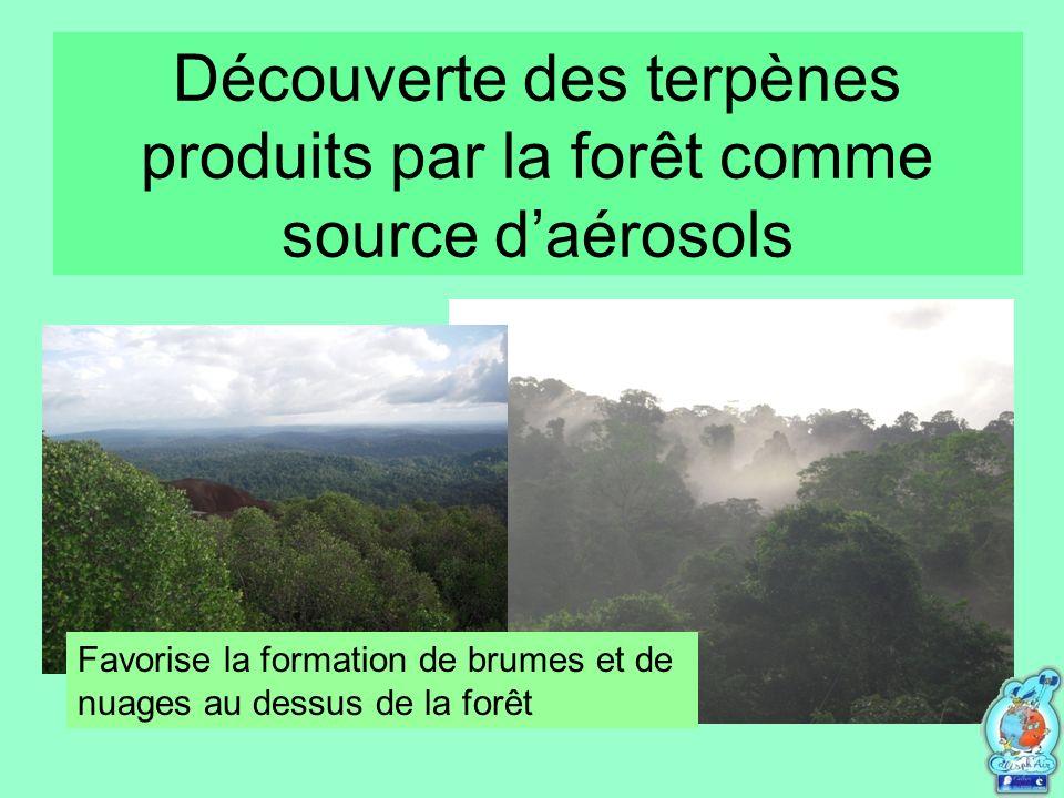 Découverte des terpènes produits par la forêt comme source d'aérosols