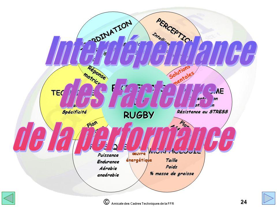 Interdépendance des Facteurs de la performance EXIGENCES Du RUGBY