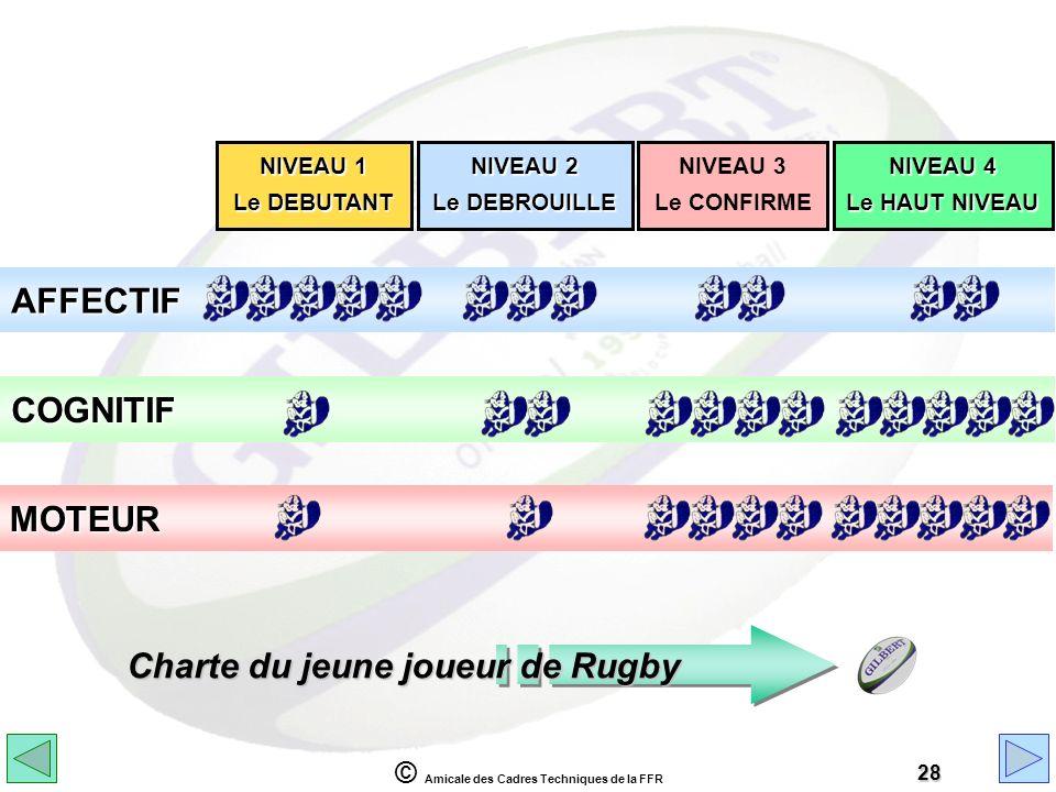 Charte du jeune joueur de Rugby