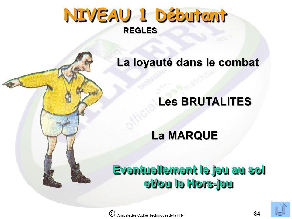 NIVEAU 1 Débutant La loyauté dans le combat Les BRUTALITES La MARQUE