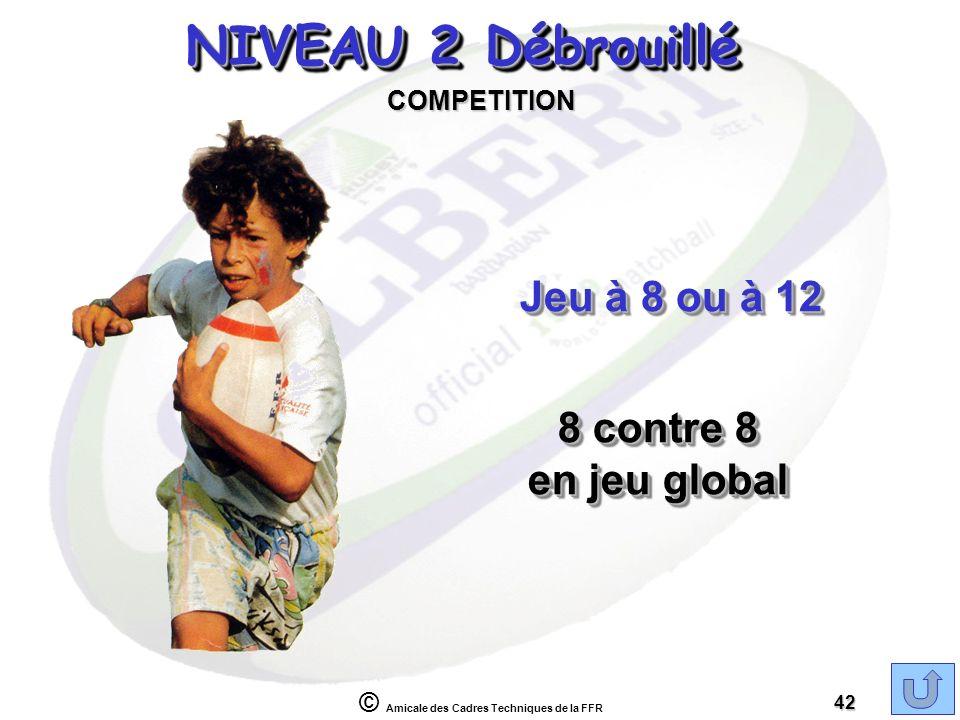 NIVEAU 2 Débrouillé Jeu à 8 ou à 12 8 contre 8 en jeu global