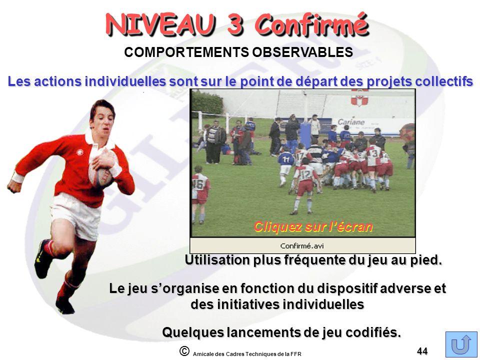 NIVEAU 3 Confirmé COMPORTEMENTS OBSERVABLES