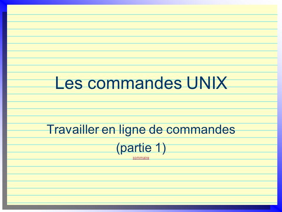 Travailler en ligne de commandes (partie 1) sommaire